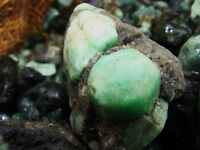 2000 Carat Lots of Unsearched Natural Emerald Rough + a FREE faceted Gemstone