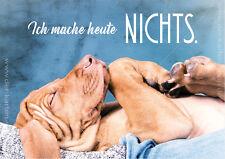 A6 Postkarte Grußkarte Karte schlafender Hund Welpe Vizla Ich mache heute NICHTS