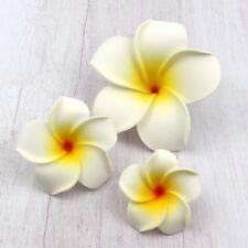 50/100Pcs White Hawaiian Frangipani Plumeria Foam Head Flower Wedding Decor