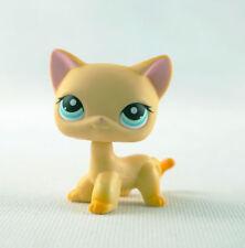 Littlest Pet Shop LPS#339 Race About Ranch Orange Shorthair Cat Blue Eyes
