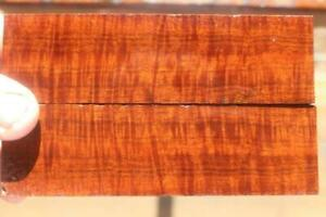 Ringed Gidgee Bookmatched Scales 887
