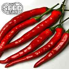 Cayenne Long Slim Pepper Seeds - 50 SEEDS NON-GMO
