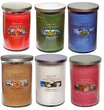6 x Rare Assorted Fragrances Yankee Candle World Journeys Twin Wick Tumbler 566g