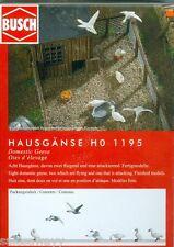 Busch 1195 hausgänse, H0