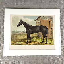 Antique Horse Print Hunter Glengarry Equestrian  Bedale Fox Hunt  Ca. 1895
