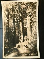 Vintage Postcard>1955>Gateway>Giant Redwoods>Sequoia National Park>California