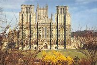 BR83358 wells cathedral somerset  uk