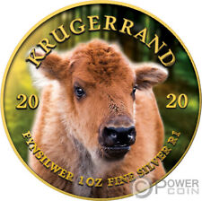 BABY BUFFALO Krugerrand Big Five 1 Oz Silver Coin 1 Rand South Africa 2020