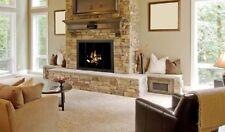 Stoll Heatilator I-60 Icon Prefab Fireplace Door Vintage Iron Bi-Fold Door New