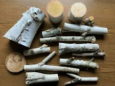 White Birch Logs, Assorted Sizes, 15 Pieces