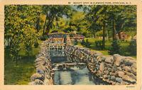 Postcard Beauty Spot In Elmwood Park, Syracuse, NY Posted 1938