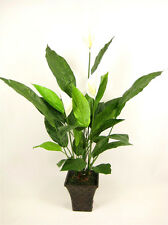 Potted Artificial Silk Cream Peace Lily (Spathiphyllum)