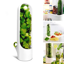 New listing Herb Saver for Fresh Produce Storage Keeper Parsley Cilantro Thyme Sage Rosemary