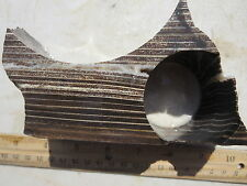 """1081  PETRIFIED WOOD WITH 2"""" CORE HOLE FROM OLD ROCK SHOP.  WHAT CAN YOU MAKE?"""