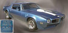 1970-73 Pontiac Firebird / Trans Am Stripe Kit - For Blue Car