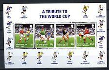 Gibraltar 1998 SG#MS827 World Football Championship MNH M/S #A59930