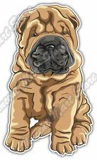 "Cute Puppy Shar Pei Dog Breed Gift Idea Car Bumper Vinyl Sticker Decal 3""X6"""