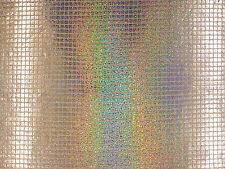 Cuadrado Holográfico Lentejuelas neto de Plata C107 con lentejuelas Confección Tela Craft