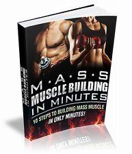 MASSA costruzione del muscolo in pochi minuti EBOOK & video corso & SITO WEB CD e rivendita, a destra