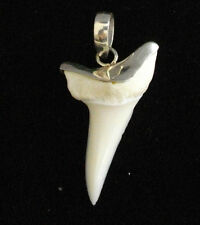 ### REAL MAKO SHARK TOOTH 925 sterling silver stylishly master crafted artist
