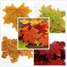 100pcs Autumn Maple Leaf Fall Fake Silk Leaves Wedding Party Christmas Art Decor
