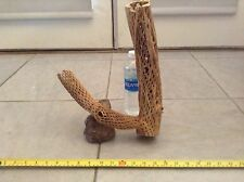 "14"" TALL ORGANIC CHOLLA WOOD*FISH*BIRDS*CRABS*SHRIMP*CRAFTS*PLANTS*CLEANED&BOILD"