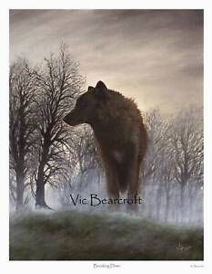 'Breaking Dawn' Limited Edition Wolf Print by Vic Bearcroft