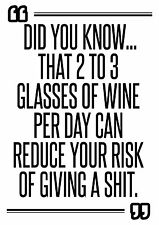 Funny Alcohol Drinking Mini Poster print quote slogan typography wallart A5 size