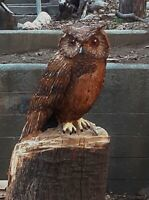 Chainsaw Hand Carved Wooden Owl Sculpture