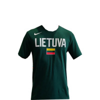 Nike Lithuania Dry Team SS Tee Green Men's Athletic Jersey 2019 - BQ3740-341