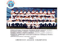 1965 MINNESOTA TWINS 8X10 TEAM PHOTO KILLEBREW OLIVA  AMERICAN LEAGUE CHAMPIONS
