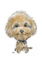 Personalised Caricature of your pet from photo colour Wonderful gifts