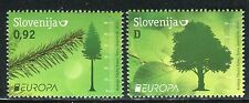 SLOVENIA 2011 EUROPA/ORGANIZATION/FOREST/NATURE/PLANTS/WOOD/TREE/LEAF