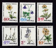 Echte postfrische Briefmarken aus Polen mit Pflanzen-Motiv