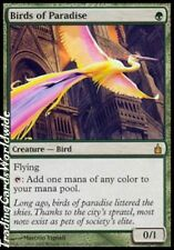 Birds of Paradise // NM // Ravnica // engl. // Magic the Gathering