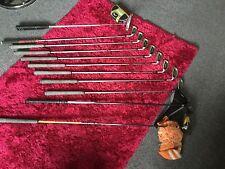Set completo di mazze da golf Titleist, Nike, Ping, OGIO