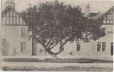 ABERFOYLE Bailie Nicol Jarvies Tree & Poker Stirlingshire Vintage PC 1908