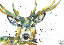 DEER Stag Pittura Stampa a6