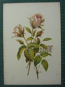 1848 PRINT ~ ROSE - LOVE - FLOWERS AND THEIR KINDRED THOUGHTS