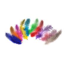 50pcs Multicolor Pearl Chicken Guinea Hen Feathers DIY Decorations J&C