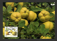 Serbia-Mc-Mk-European Nature Protection-Flora-Fruits-A pple Quince-2015.