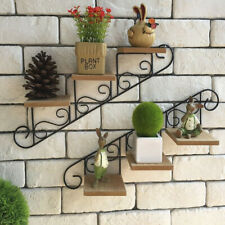 Metal Staircase Frame Wall Hanging Shelf Showcase Plant Stand Home Decor Store