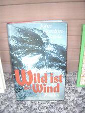 Wild ist der Wind, ein Roman von John Gordon-Davis