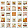 Pillow Home Rustic Cover Thanksgiving Fall Decor Cushion Sofa Case Art Autumn