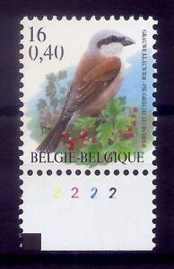 BELGIE * BUZIN  nr 2885 P8  plaatnr 2 * postfris xx