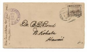 Hawaii stamp cover, 1896 Official Dept. of Education corner card hand stamp