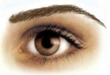 Eyebrows Dark Brown High Arch Tattoos