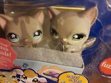 Littlest Pet Shop Cat 467 & 468/Lps New/Lps 467/Lps 478/Littlest pet shop Cats