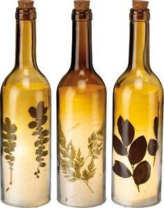 Botanical Wine Bottle Light Set - Battery Operated - 3
