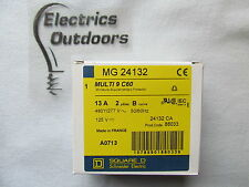 MERLIN GERIN 13 Amp DOUBLE POLE MCB INTERRUTTORE AUTOMATICO 480V 24132 88033